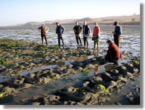 Inspection of aquaculture operations on Tomales Bay. CDFW photo by Tom Moore
