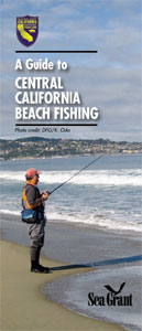 Guide to Central California Beach Fishing